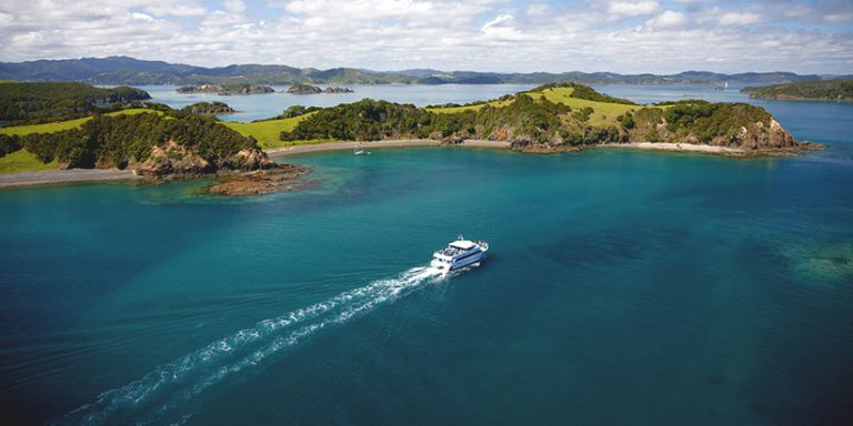 cruises ship moving away in Bay of Islands
