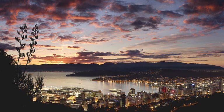 Wellington city panorama just after sunset